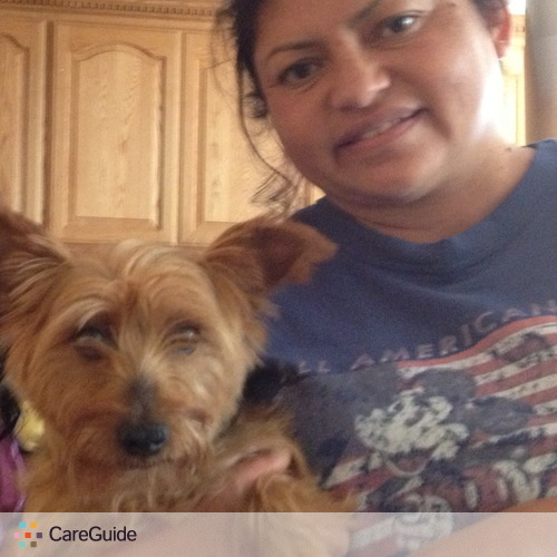 Pet Care Provider Trini Orduno's Profile Picture