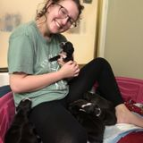Caring Animal Caregiver Available Immediately