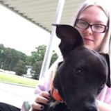 Hello, my name is Samantha. I offer pet sitting and dog walking services to people in/near Ahoskie, NC.