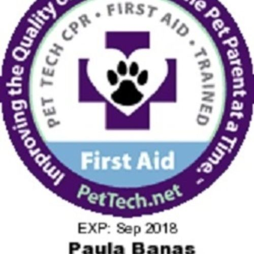 Pet Care Provider Paula B Gallery Image 2