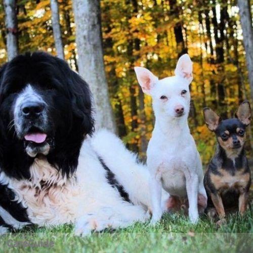 Pet Care Job Fred B's Profile Picture