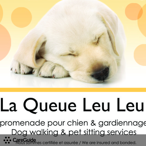 Pet Care Provider Amy-Jill Drury's Profile Picture