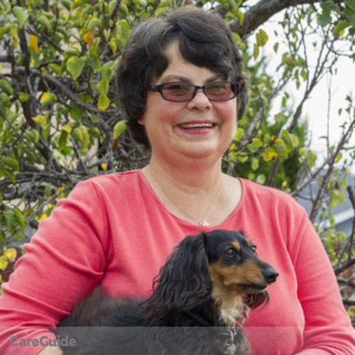 Pet Care Provider Karen Roy's Profile Picture