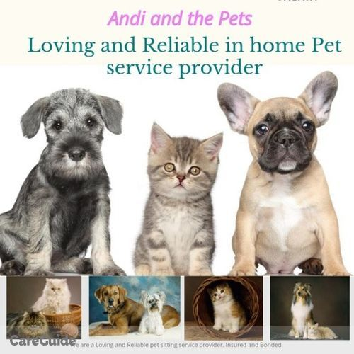Pet Care Provider Andi and the Pets A's Profile Picture