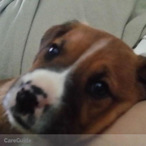 Pet Care Job Rhonda Dodson's Profile Picture