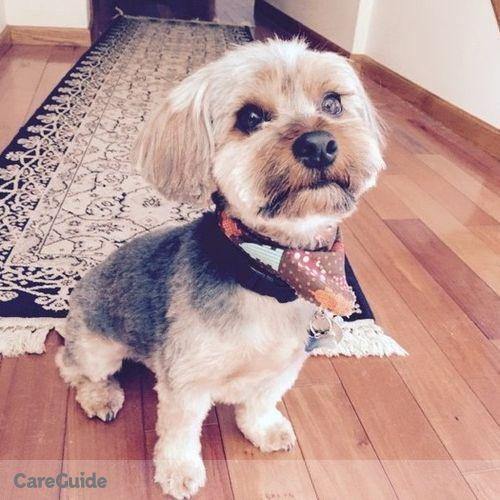 Pet Care Job Jamie Noakes's Profile Picture