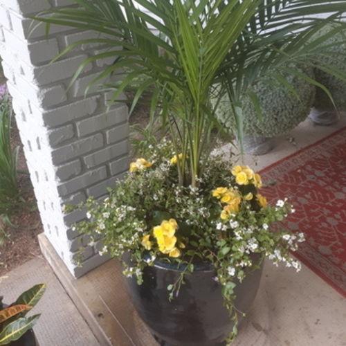 Gardener Provider Laura E Gallery Image 2