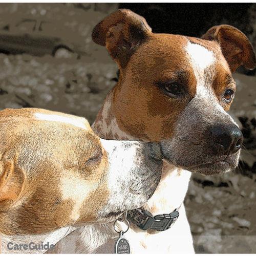 Pet Care Provider Kristin Lares's Profile Picture