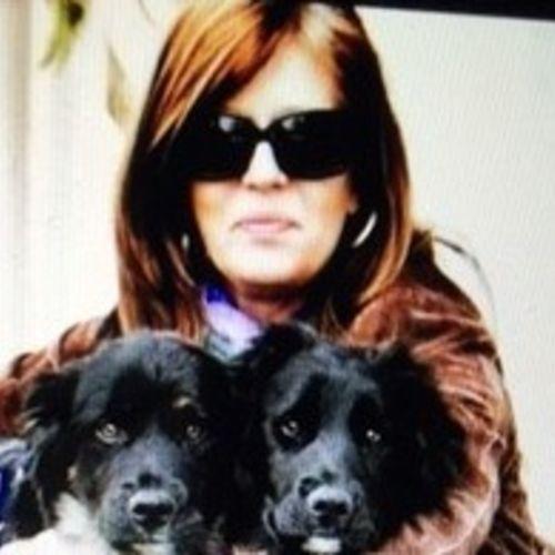 Pet Care Provider Kim G's Profile Picture