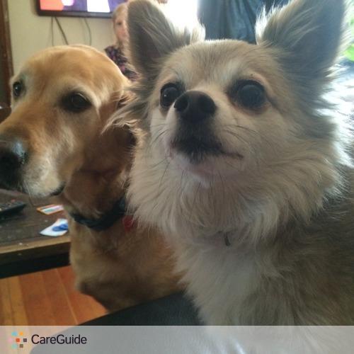 Pet Care Provider Rachel Kadrmas's Profile Picture