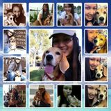 A Pet Lover Interested in Pet Sitter, Dog Walker, Grooming job in Temecula and Murrieta