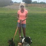 Pet Sitter/dog walker providing exceptional TLC in Pembroke Pines, Florida