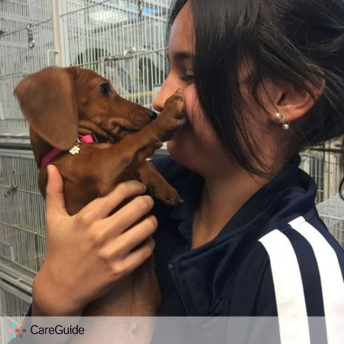 Pet Care Provider Sabrina Rivera's Profile Picture