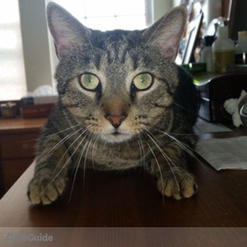 Pet Care Provider Dianne R's Profile Picture