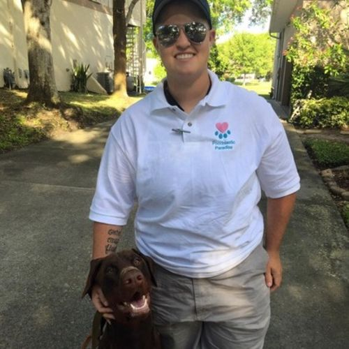 Pet Care Provider Ashley Cooke's Profile Picture