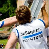 Painter Job in Ottawa
