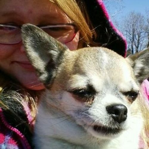 Pet Care Provider Kristine B Gallery Image 2