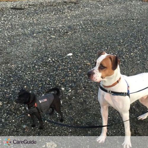 Pet Care Provider Brandon J's Profile Picture