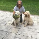 Loving Pet Sitter in Independence
