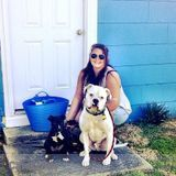 Dog Walker, Pet Sitter in Raleigh