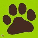 Dog Walker, Pet Sitter in Cobble Hill