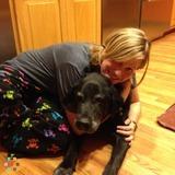 Dog Walker, Pet Sitter in Somerville