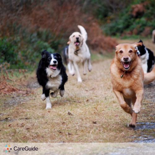 Pet Care Provider Adrien Tessier's Profile Picture