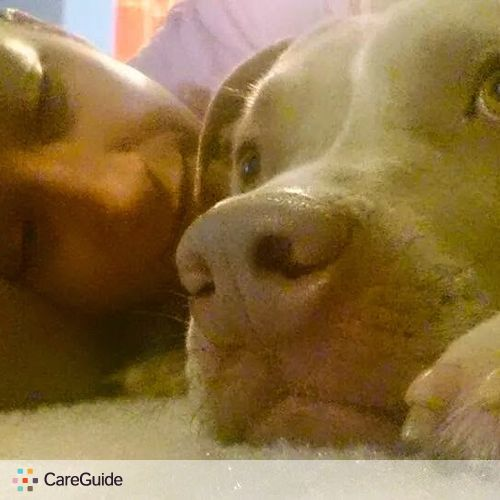 Pet Care Provider Stephanie Pellitteri's Profile Picture