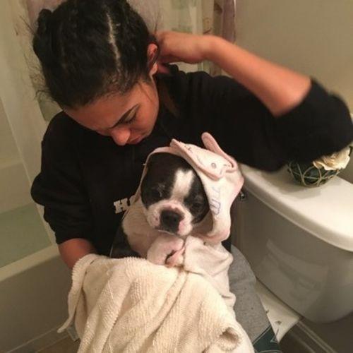 Mariah T – pet sitter