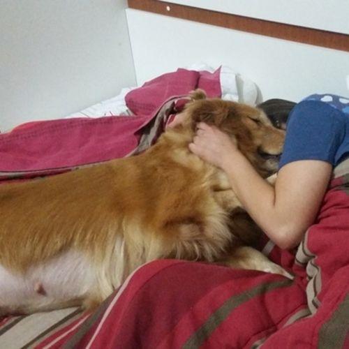 Pet Care Provider Cristiane C Gallery Image 2