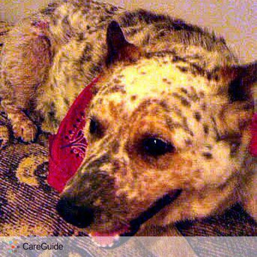 Pet Care Provider Linda Bujnovsky's Profile Picture
