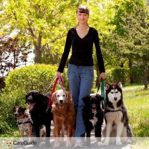 Pet Care Provider Agi's Dogs's Profile Picture
