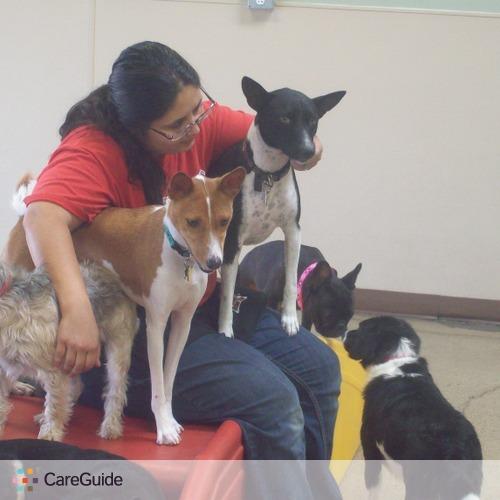 Pet Care Provider Angelica Sanabria's Profile Picture
