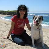 Dog Walker, Pet Sitter in San Carlos