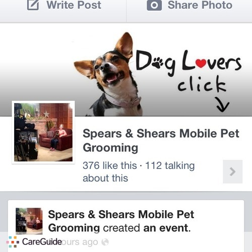 Pet Care Provider Spears Shears's Profile Picture