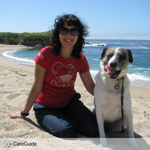 Pet Care Provider Cindy Asrir's Profile Picture