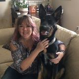 Rest easy when you are away from home pet sitter/house sitter