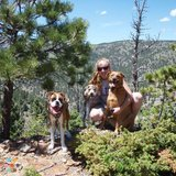 Dog Walker, Pet Sitter in Vail