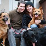 Dog Walker, Pet Sitter in Sebastopol