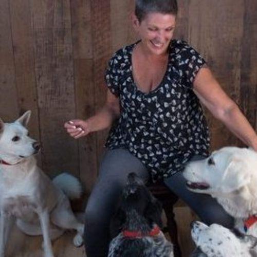 Pet Care Provider Shelley Peterson's Profile Picture