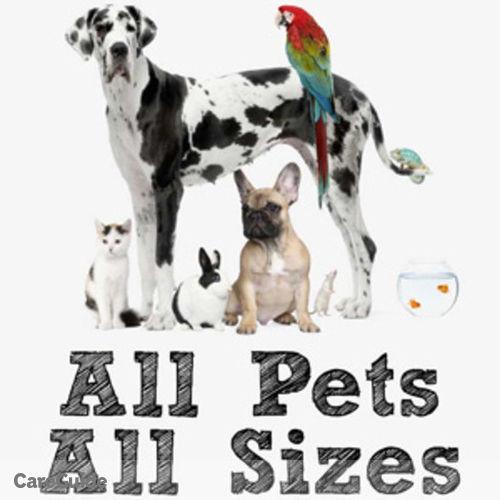 Pet Care Provider Christine S's Profile Picture
