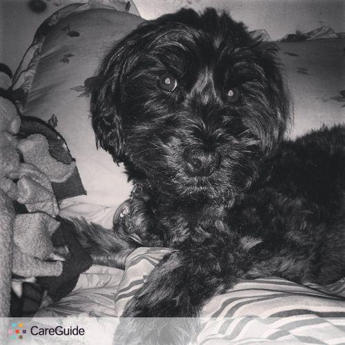 Pet Care Provider Jacqueline L's Profile Picture