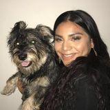 Qualified Pet Care Provider in Clovis, California
