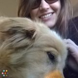 Dog Walker, Pet Sitter in Monroe