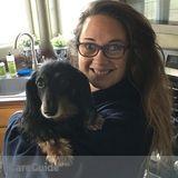 Dog Walker, Pet Sitter in Cheyenne
