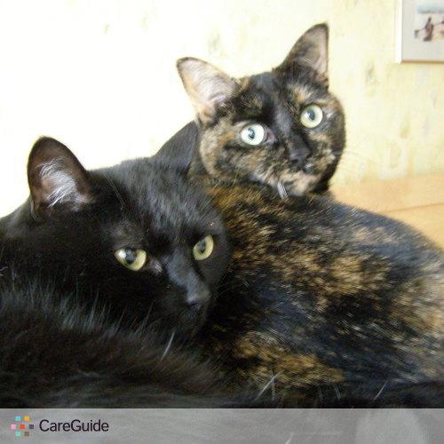 Pet Care Job Diana Cole's Profile Picture