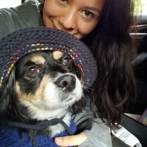 Pet Care Job Roxy Salazar's Profile Picture