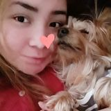 Loving doggie nanny