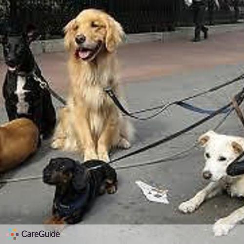 Pet Care Provider Justin Lauzon's Profile Picture