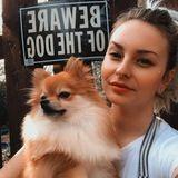 Dog Walker / Pet Sitter in Pace area